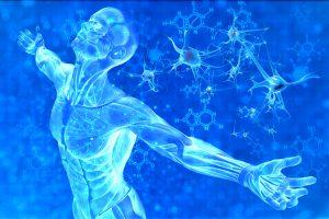 buňky_tělo_DNA_léčba