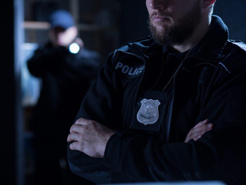 policie_vysetrovani_inspekce_kontrola