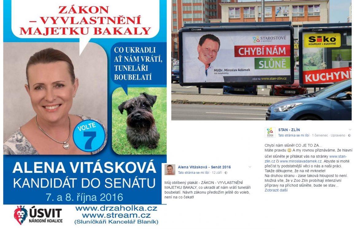 alena_vitskova_billboard_facebook